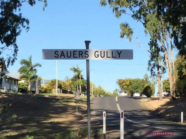 Sauer Gully (8)